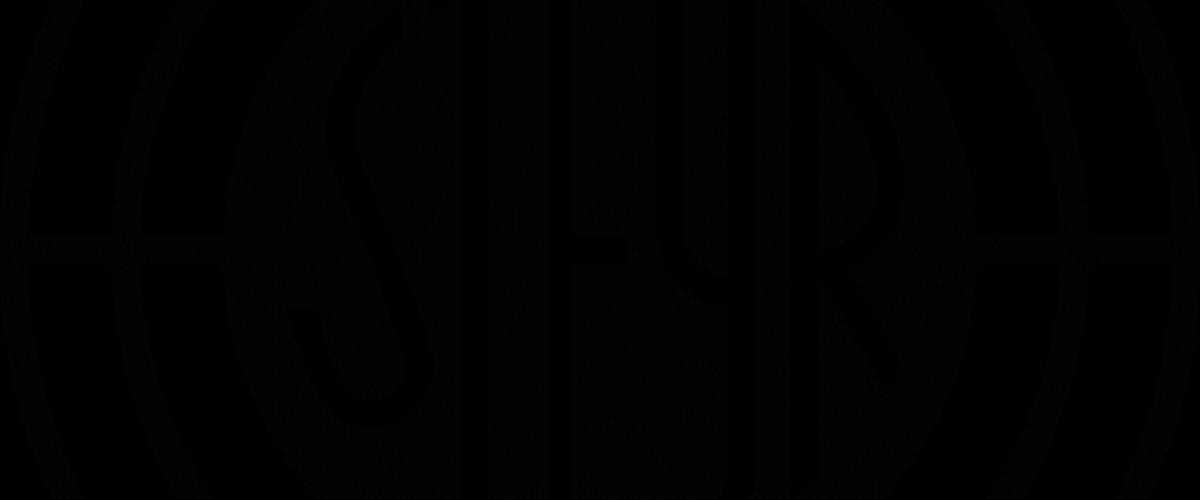 STEYR_ARMS_pos_1